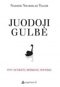 nn-talebo-knygos-juodoji-gulbe-virselis-63831942